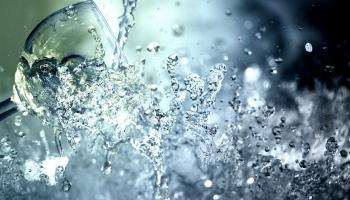Чистая, как слеза? Как используют воду из родников и кто в ответе за их состояние