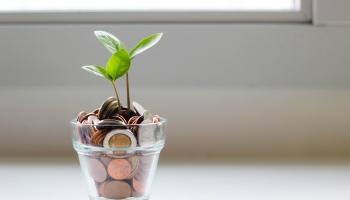 Izvērtēt tēriņus un rūpīgi plānot ģimenes budžetu: ekspertu un vecāku ieteikumi