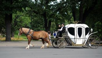 Ar kādiem automobiļiem brauc prinči, hercogi un karaļi?