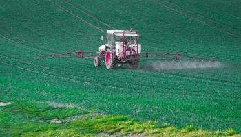 Гербициды и продовольствие: есть ли риски для здоровья?