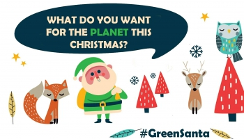 #DearGreenSanta: отчего позеленел Санта Клаус?