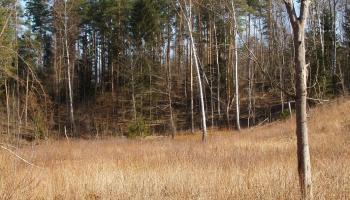 Pēdējos gados Latvijā atklāti vairāki desmiti jaunu pilskalnu