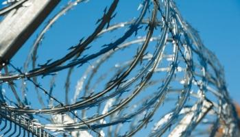 Глава МВД: временный забор на границе с Беларусью появится уже осенью