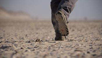 Виртуальные трассы здоровья: гаджет для смартфона побуждает людей больше ходить пешком