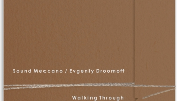 "# 187 ""Sound Meccano / Evgeniy Droomoff"" albums: Walking Through  (2014)"