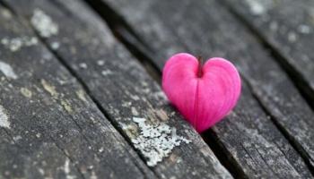 Ceļā pie Aleksandra Čaka. 8. stāsts. Dzejnieka mīlestība - Milda Grīnfelde