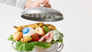 Noslīkt pārtikas atkritumos