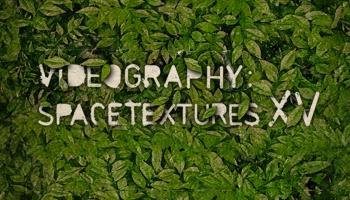 Koncertprogramma Videogrāfija - Baltās nakts visuma tekstūras LU Botāniskajā dārzā