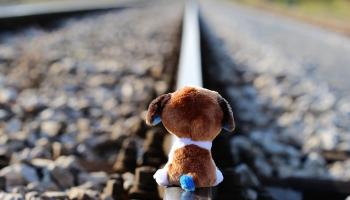Ничейные дети: как вернуть им детство?
