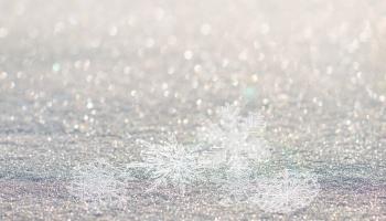 15. janvāris. Uzņem pasaulē pirmo sniegpārsliņas fotogrāfiju
