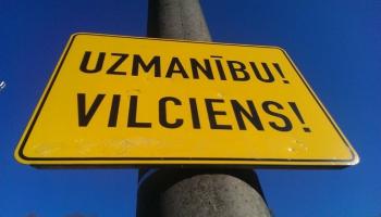 Правила дорожного движения нарушают две трети латвийцев, свидетельствует исследование LDz