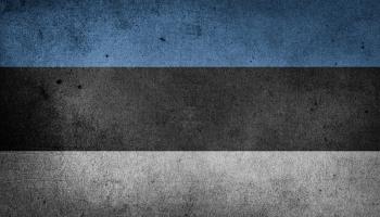 Вопрос неграждан: последнее слово — за Таллином