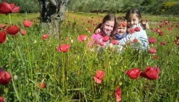Ciemojamies Spānijā. Skaņu mīklas min Martosi-Inču ģimene