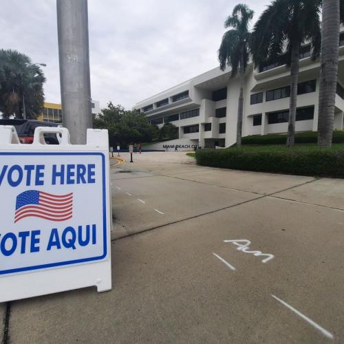 ASV interesi par alternatīvās balsošanas iespējām ir izrādījis liels vēlētāju skaits