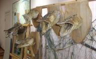Burtnieki: savdabīgi mājvārdi un zvejnieku doti nosaukumi makšķerēšanas vietām ezerā