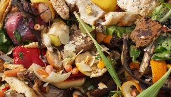 Atkritumos nonāk pārāk daudz pārtikas. Meklējam iespējamos problēmas risinājumus