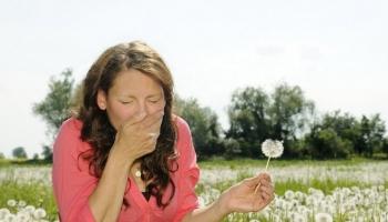 Pavasaris un alerģijas.
