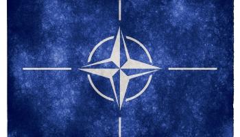 Divas puslodes:NATO jubilejas samits, korupcija Maltā, Krievijas pēdas Berlīnes slepkavībā