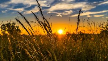 Rīts, kad spoži spīdēja saule