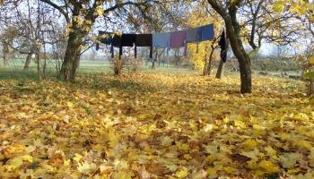"""""""Не только Сигулда"""": где встретить золотую осень в Латвии"""