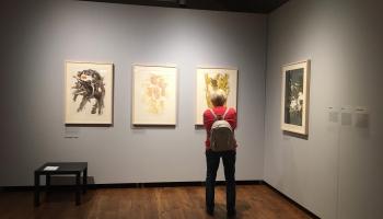 Daugavpils Marka Rotko mākslas centrā jaunā izstāžu sezona kā oda grafikai