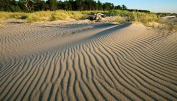 Aizsargājamās dabas teritorijas: traucēklis vai ieguvums īpašumā