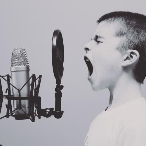 Balss, klusums un troksnis
