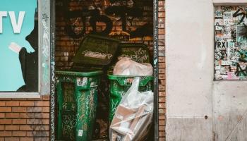 Как уменьшить пищевые отходы – в ресторанном бизнесе и у себя дома