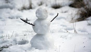 Ziemas brīvlaika aktivitātes ģimenēm: doties dabā vai izlasīt kādu grāmatu