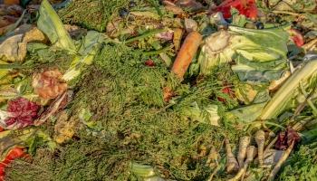 Pasaulē atkritumos nonāk arvien vairāk pārtikas