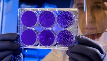 Новый короновирус в Китае признан опасным, но риск заражения невысок