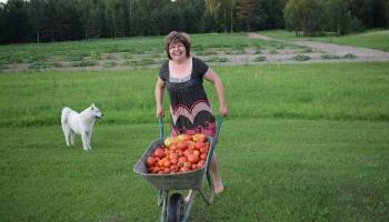 Zilupes novada tūrisma organizētāja, uzņēmīga mamma un dārzniece Ilga Ivanova