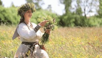 Травница Лига Рейтерe: Все травы целебные – все лечат