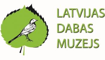 2015. gada pirmajā pusē turpināsies projekti, kas aizsākti Rīga 2014 programmā