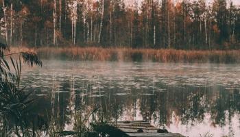 Latvijas Dabas fondam - 30. Nevalstisko organizāciju nozīme dabas aizsardzībā