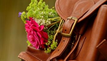 """""""Lauku ceļotājs"""": Pēc vasaras daži lauku tūrisma uzņēmumi varētu neturpināt darbu"""