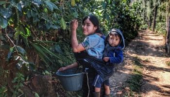 Ceļojums kafijas pasaulē - Dienvidamerikā