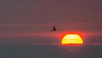 Бигауньциемс: край восходящего солнца