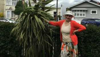 """""""Богатые за бедных"""": как Новая Зеландия стала раем для пенсионеров"""