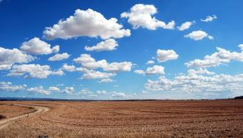 Bioogles izmantojums lauksaimniecībā var palīdzēt mazināt vides piesārņojumu