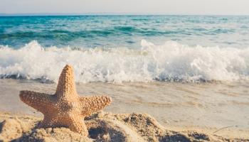 Atvaļinājuma piešķiršanas, noformēšanas un atvaļinājuma naudas aprēķināšanas kārtība