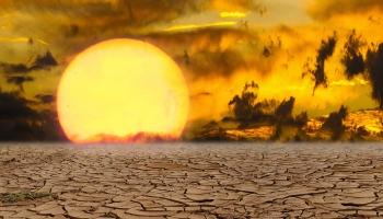 Ekoskolu nedēļa: skolēni spriež par klimata pārmaiņām un bioloģisko daudzveidību
