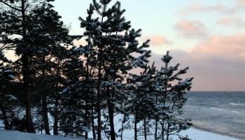 Inguss Antonovičs: Katru gadu Latvijas jūras rietumpiekrastē grūst stāvkrasti