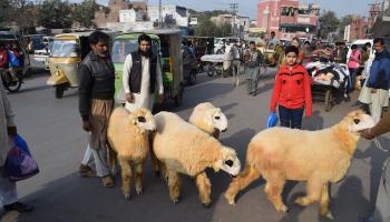 Ieroči un viesmīlība Pakistānā!