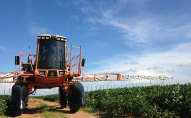 Pesticīdu lietojums lauksaimniecībā. Arī lielie ražotāji sāk domāt par bioloģiskām metodēm