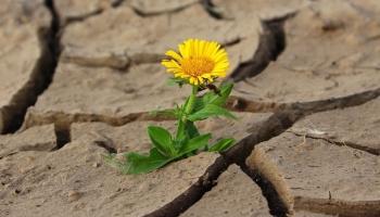 Жизнь длинная и короткая: от чего это зависит?