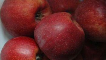 Маркировка продуктов питания с точки зрения здоровья