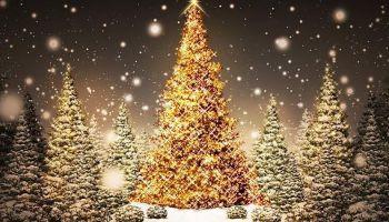 """""""Ak, eglīte"""" - dziesma par Ziemassvētku galveno simbolu"""