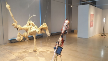 """Izstādē """"PostSensorium"""" 14 mākslinieki  pievēršas cilvēka un dabas attiecību tēmai"""