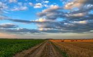 Pesticīdi lauksaimniecībā: vai ir risinājums, kas apmierina biškopjus un zemkopjus